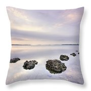 Endless Echoes Throw Pillow