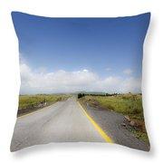 Endlkess Road  Throw Pillow