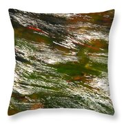 Energized Throw Pillow