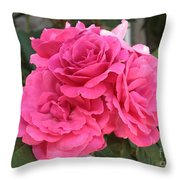 Energizing Pink Roses Throw Pillow