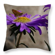 Engaged In Purple Throw Pillow