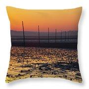 England, Northumberland, Pilgrims Causeway Throw Pillow