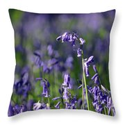 English Bluebells In Bloom Throw Pillow