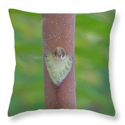 Engraved Forever Throw Pillow