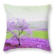 Enhanced Lake Henshaw Throw Pillow