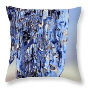 Enjoying Sunset Throw Pillow