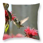 Enjoying The Bee Balm  Throw Pillow