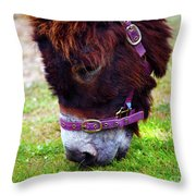 Enjoying The Sweet Irish Grass Throw Pillow