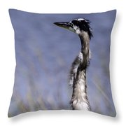 Enjoying The View Throw Pillow