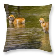 Enjoying The Water 2 Throw Pillow