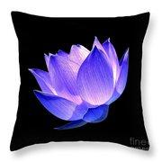 Enlightened Throw Pillow by Jacky Gerritsen