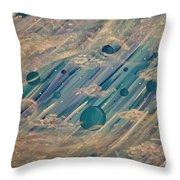 Enlightened Universe Throw Pillow