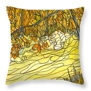 Eno River #25 Throw Pillow