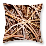 Entangled Throw Pillow
