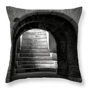 Enter The Arena Throw Pillow