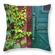 Enter Vine Door Throw Pillow