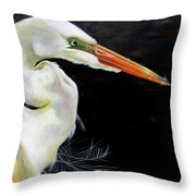 Enticement Throw Pillow