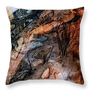 Entity Embedded Throw Pillow