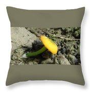 Entoloma Incanum Throw Pillow