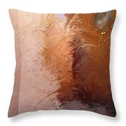 Entrance 2 Throw Pillow