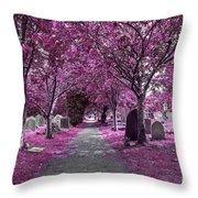 Entrance To A Cemetery Throw Pillow