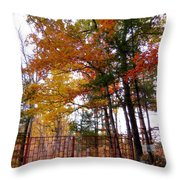 Entrance To A Mahayana Buddhist Temple Throw Pillow