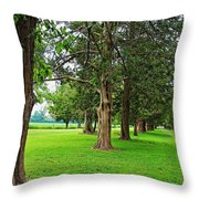 Entrance To The Past Throw Pillow