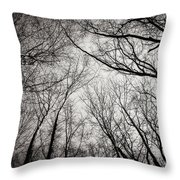 Entwined In The Sky Throw Pillow