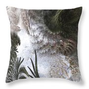Environmental Transitions Throw Pillow