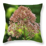 Epargyreus Clarus On Joe-pyed Weed Throw Pillow