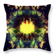 Epiphany Of The Labyrinth Throw Pillow