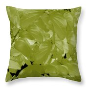 Epiphnay 1 Throw Pillow