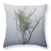 Epiphyte In The Fog Throw Pillow