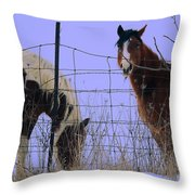 Equestrian Beauties Throw Pillow
