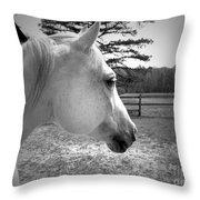 Equine Profile Throw Pillow