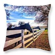Equine Profiles Throw Pillow