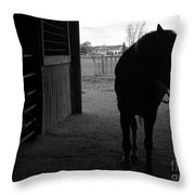 Equus Sapien Vi Throw Pillow