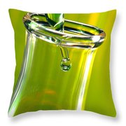 Erlenmeyer Flask In Science Research Lab Throw Pillow