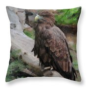 Erne Throw Pillow