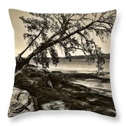 Erosion - Anselized Throw Pillow