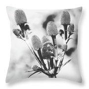 Eryngium #flower #flowers Throw Pillow