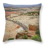 Escalante River Basin Throw Pillow