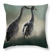 Escalante Sandhill Cranes Throw Pillow
