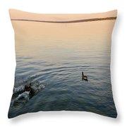 Escaping Geese  Throw Pillow