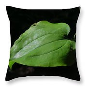Essence Of A Leaf Throw Pillow