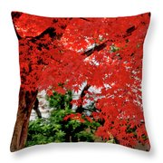 Essence Of Japanese Maple Tree Throw Pillow