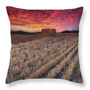 Essex Hay At Sunrise Throw Pillow