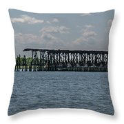 Established In 1915 Throw Pillow