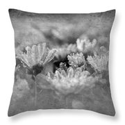 Etched In Stone 6 Throw Pillow