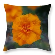 Eternal Giver Throw Pillow